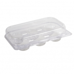 Compostable 6 Mini Cupcakes Container