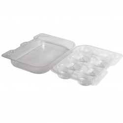 Compostable 6 Cupcakes Container